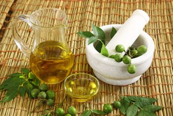 How To Use Neem Oil On Houseplants